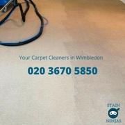 Carpet cleaners Wimbledon