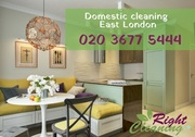 Domestic cleaners East London